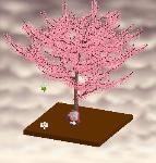 Korokoroさんの木