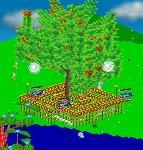 shi4608さんの木