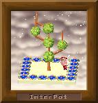 tora-yさんの木