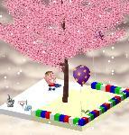 キョココの木さんの木