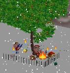 トンちゃんさんの木